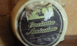caciotta_amiatina
