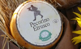 Pecorino_etrusco